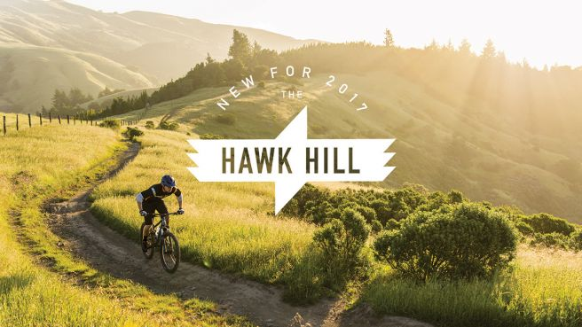 Hawk Hill (pl)